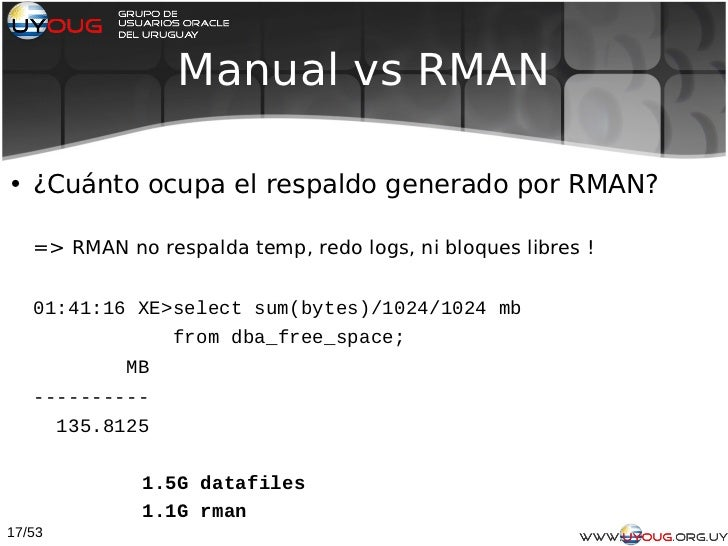 redo backup and recovery manual