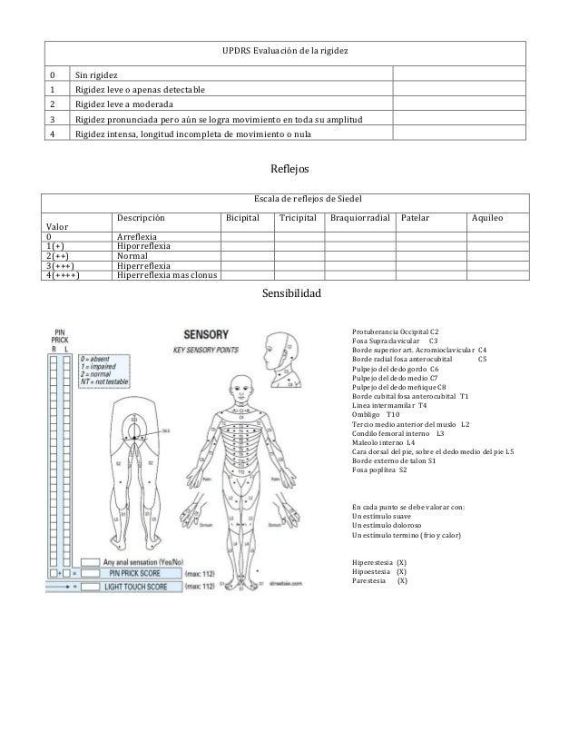 valoracion Neurologica formato