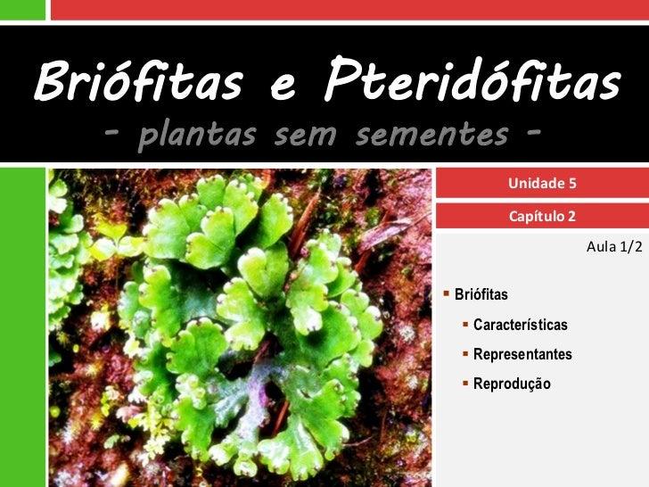 Briófitas e Pteridófitas  - plantas sem sementes -                              Unidade 5                              Cap...