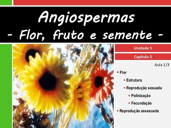 Angiospermas- Flor, fruto e semente -                             Unidade 5                             Capítulo 5        ...