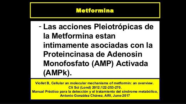 Metformina, efectos no glucémicos e indicaciones