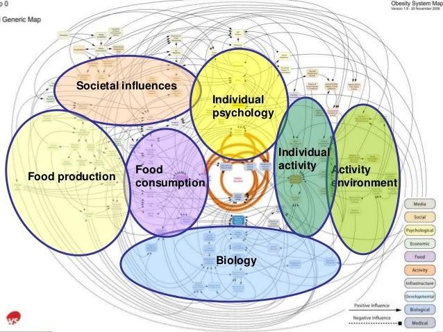 Societal influences Individual psychology Biology Activity environment Individual activityFood consumption Food production