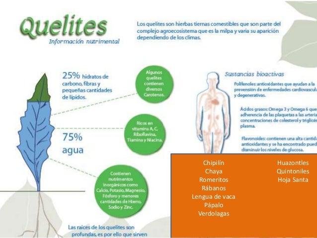 BENEFICIOS DE LA DIETA DE LA MILPA • Aporte proteico adecuado, no favorece la desnutrición! – Principalmente leguminosas y...