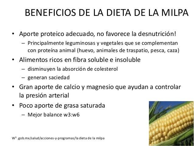 BENEFICIOS DE LA DIETA DE LA MILPA • Consumo excelente de micronutrimentos – Carotenoides, flavonoides, tocoferoles – Vita...