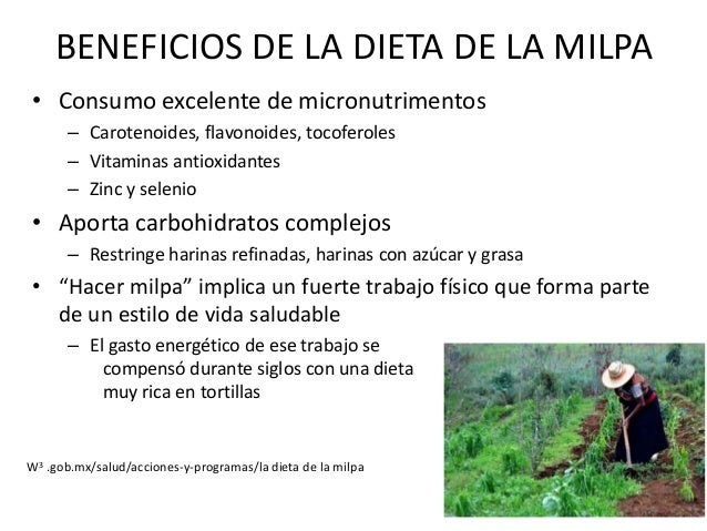 RECOMENDACIONES DE LA DIETA DE LA MILPA • Defina sus compras en base a la proporción de alimentos que señala la pirámide –...
