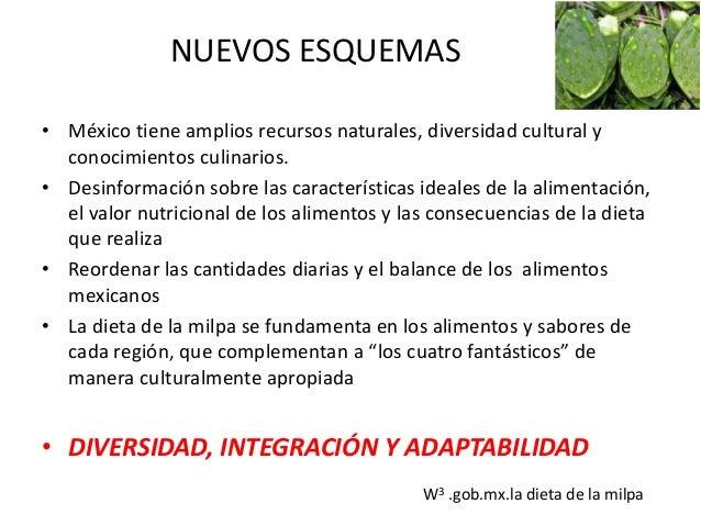 DEPENDENCIA ALIMENTARIA • México produce 20mill ton/anuales de maíz blanco mediante cultivos de riego, con alto rendimient...