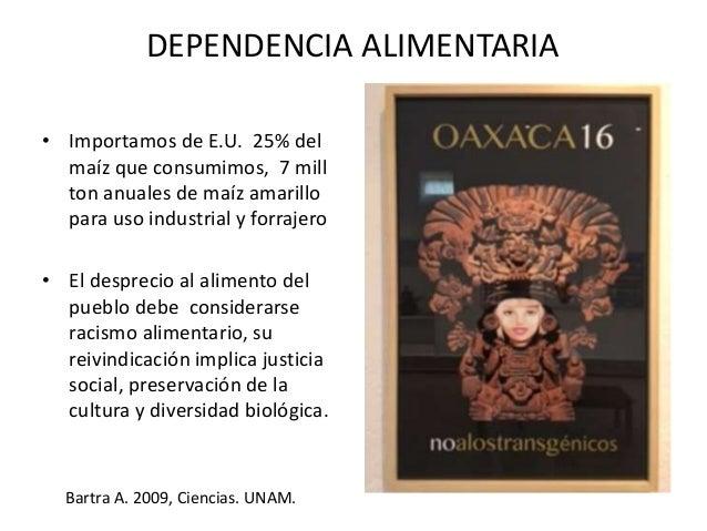 """EL CAMPO MEXICANO… • El modelo """"tecnológico"""" obliga al campesino a emplear dosis crecientes de abonos químicos que aparent..."""