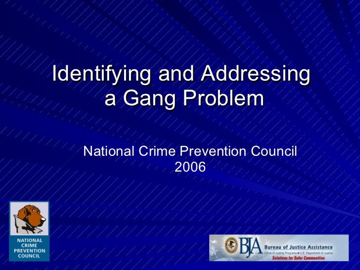 Identifying and Addressing  a Gang Problem National Crime Prevention Council 2006