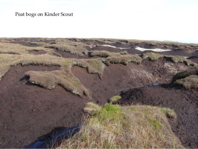 Peat bogs on Kinder Scout