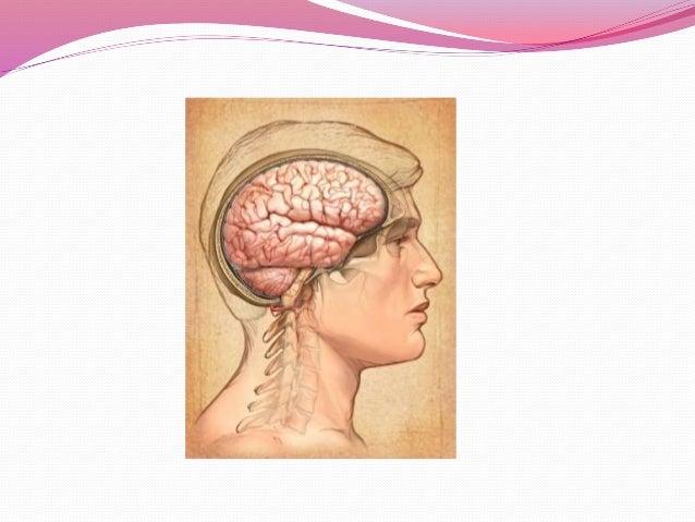 Succinylcholine Drug Card Flashcards | Quizlet