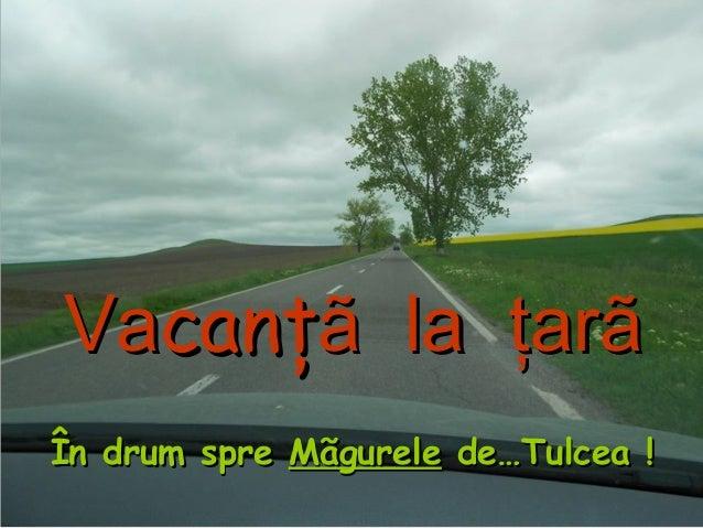 VaVacanţcanţã la ţarãã la ţarã În drum spreÎn drum spre MãgureleMãgurele de…Tulcea !de…Tulcea !