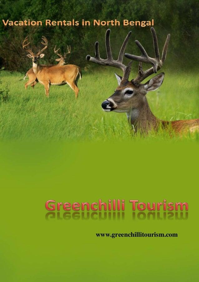 www.greenchillitourism.com www.greenchillitourism.com