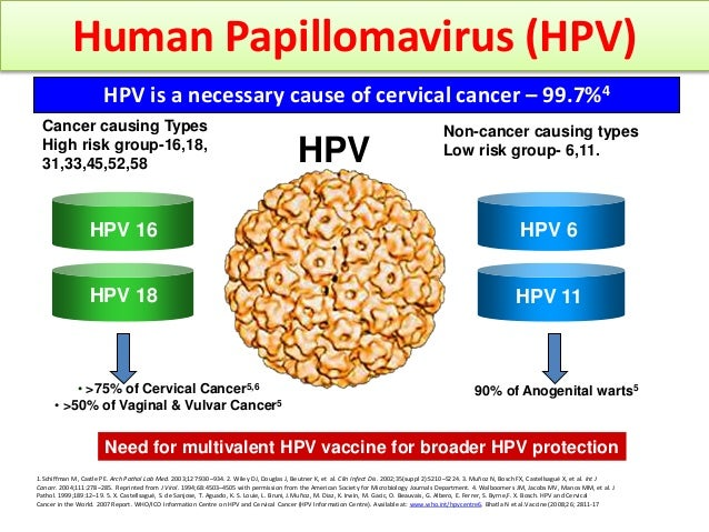 Cervical Cancer Significance Of Hpv 16 18: Mission SAY No Vto Cervical Cancerv With HPV Vaccination