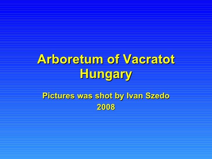 Arboretum of Vacratot Hungary Pictures was shot by Ivan Szedo 2008