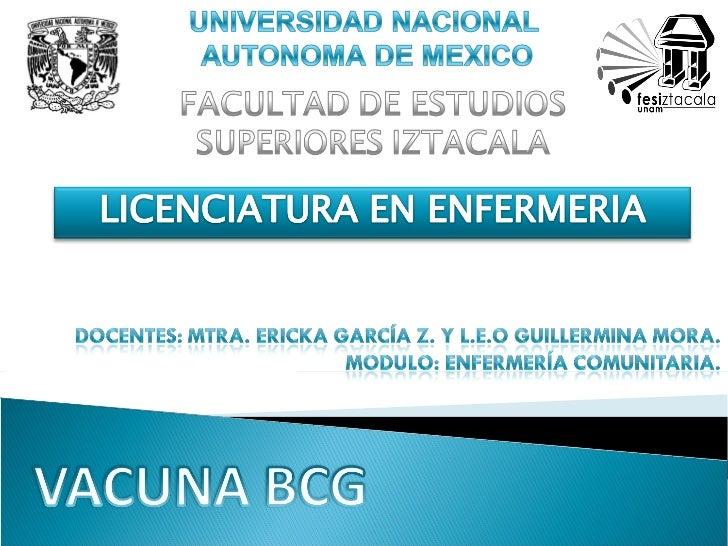 Vacuna BCG antituberculosa Slide 1