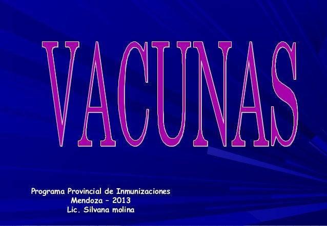 Programa Provincial de Inmunizaciones Mendoza – 2013 Lic. Silvana molina