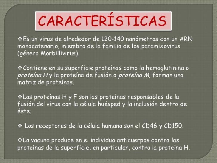 CARACTERÍSTICAS<br /><ul><li>Es un virus de alrededor de 120-140 nanómetros con un ARN monocatenario, miembro de la famili...