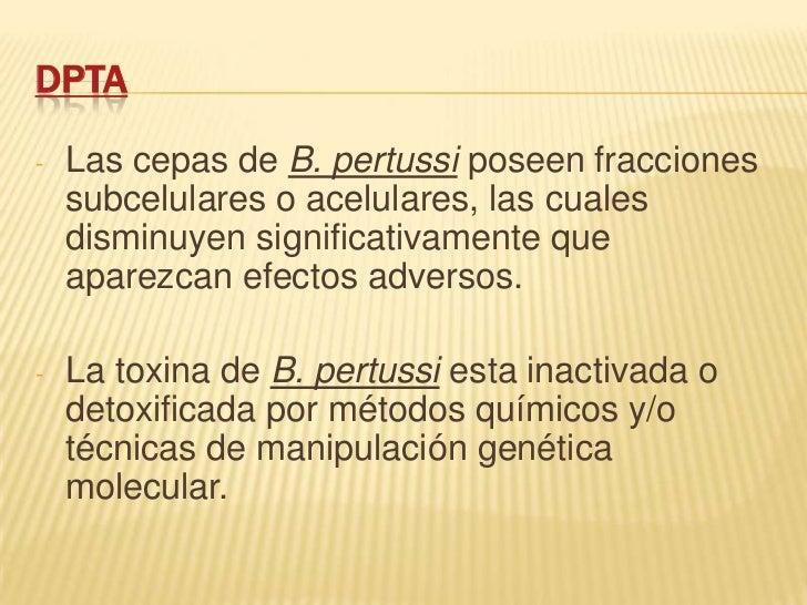 DPTA-   Las cepas de B. pertussi poseen fracciones    subcelulares o acelulares, las cuales    disminuyen significativamen...