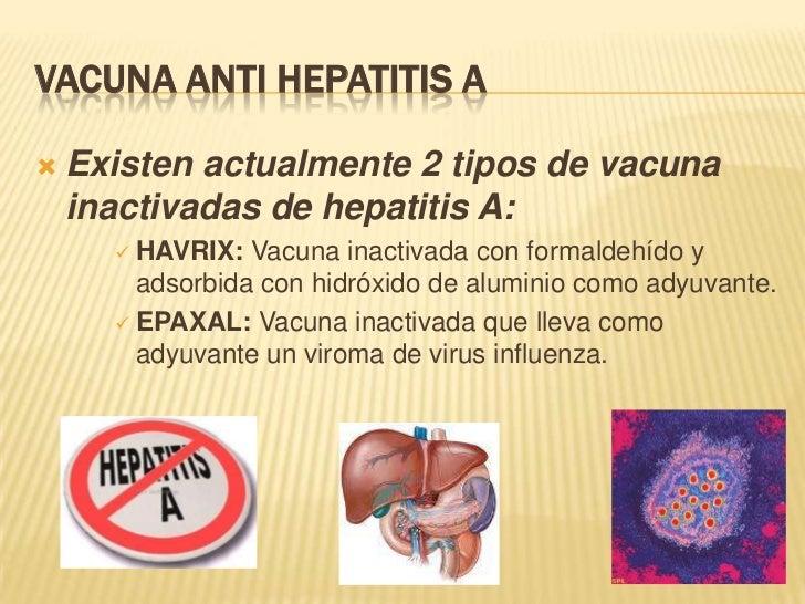 VACUNA ANTI HEPATITIS A   Existen actualmente 2 tipos de vacuna    inactivadas de hepatitis A:       HAVRIX:  Vacuna ina...