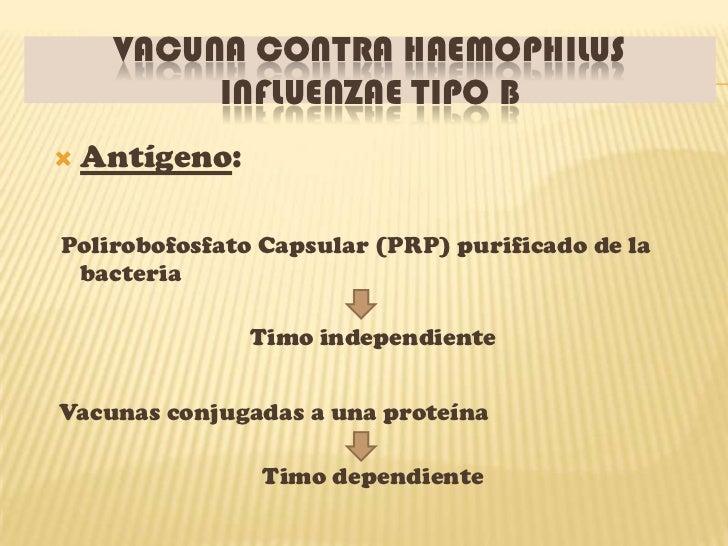 VACUNA CONTRA HAEMOPHILUS          INFLUENZAE TIPO B   Antígeno:Polirobofosfato Capsular (PRP) purificado de la bacteria ...