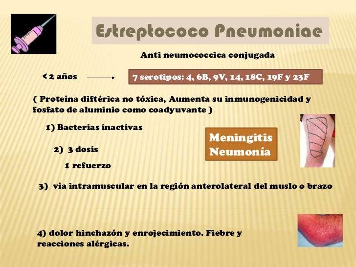 Estreptococo Pneumoniae                       Anti neumococcica conjugada  < 2 años           7 serotipos: 4, 6B, 9V, 14, ...