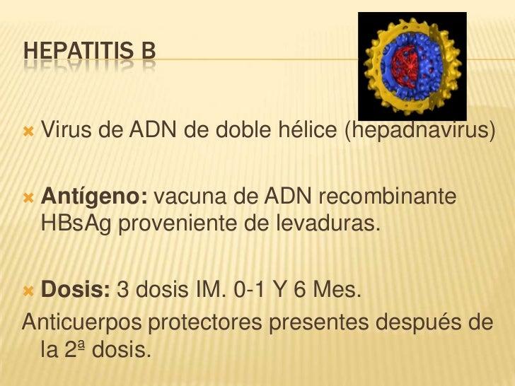 HEPATITIS B   Virus de ADN de doble hélice (hepadnavirus)   Antígeno: vacuna de ADN recombinante    HBsAg proveniente de...