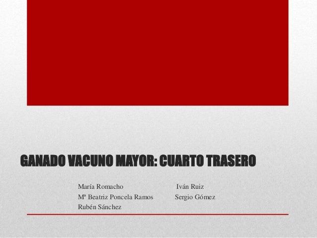 GANADO VACUNO MAYOR: CUARTO TRASERO María Romacho Iván Ruiz Mª Beatriz Poncela Ramos Sergio Gómez Rubén Sánchez