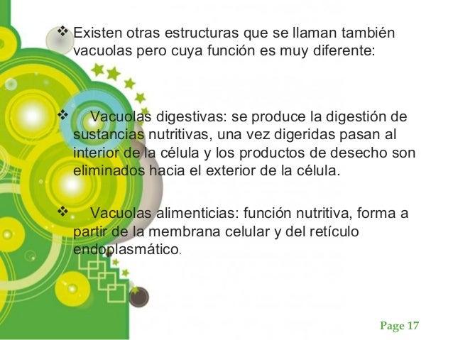 Page 17  Existen otras estructuras que se llaman también vacuolas pero cuya función es muy diferente:  Vacuolas digestiv...
