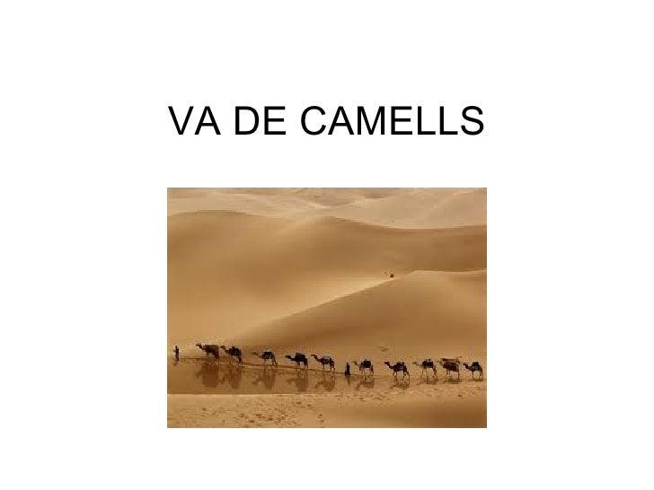 VA DE CAMELLS