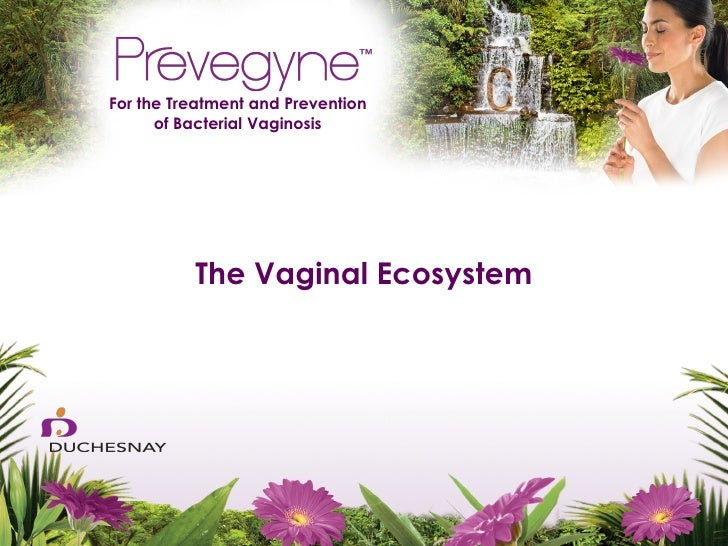 For the Treatment and Prevention      of Bacterial Vaginosis          The Vaginal Ecosystem