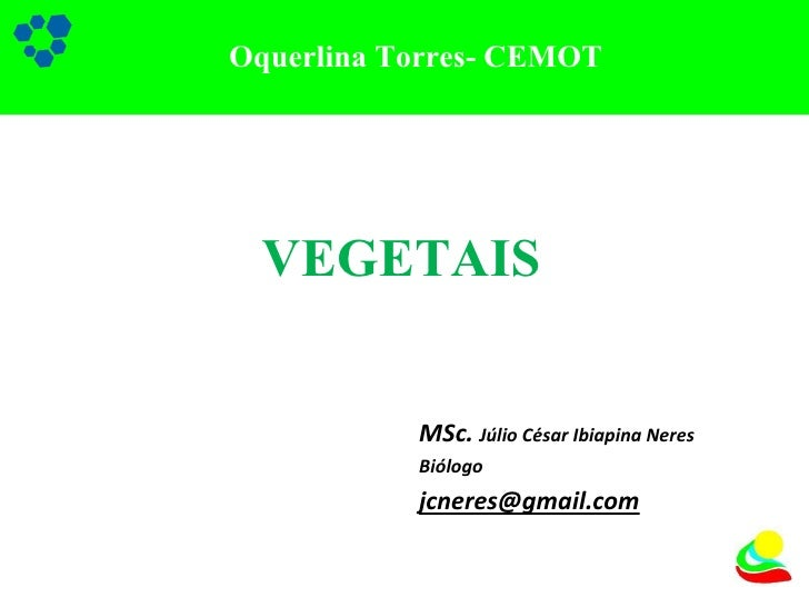 MSc.  Júlio César Ibiapina Neres Biólogo [email_address] Oquerlina Torres- CEMOT VEGETAIS