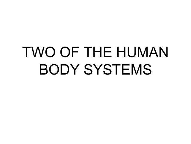 TWO OF THE HUMAN  BODY SYSTEMS