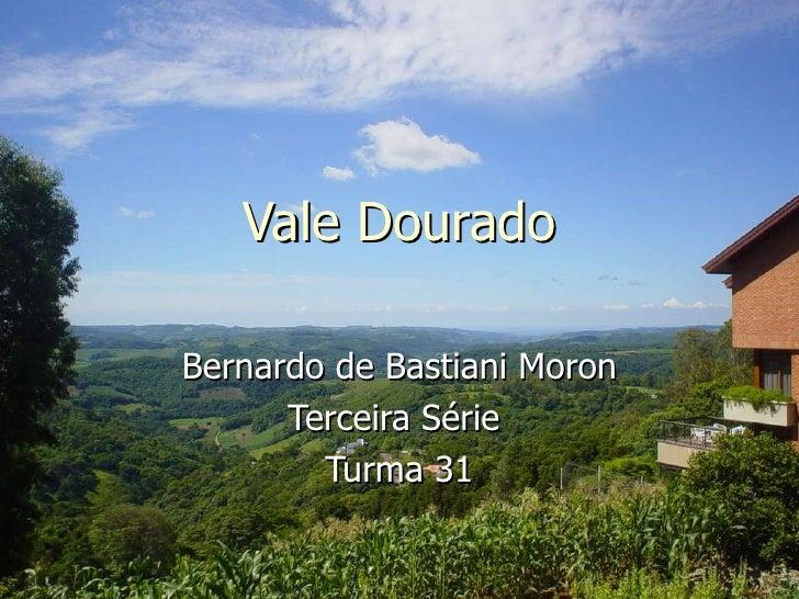 Vale Dourado Bernardo de Bastiani Moron Terceira Série  Turma 31