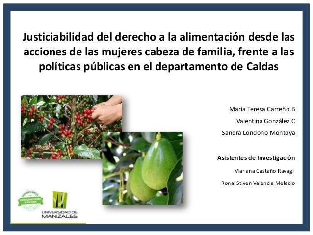 Justiciabilidad del derecho a la alimentación desde las acciones de las mujeres cabeza de familia, frente a las políticas ...