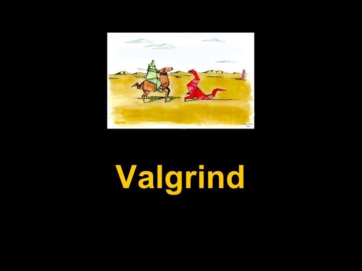 Valgrind Valgrind
