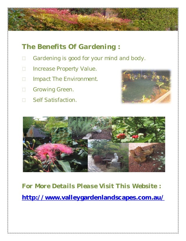 Valley gardenlandscapes garden design sydney for Garden designs sydney