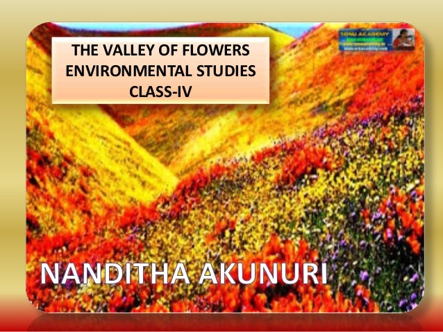 THE VALLEY OF FLOWERS ENVIRONMENTAL STUDIES CLASS-IV