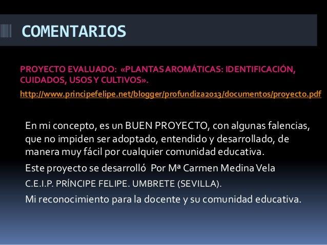 COMENTARIOS PROYECTO EVALUADO: «PLANTASAROMÁTICAS: IDENTIFICACIÓN, CUIDADOS, USOSY CULTIVOS». http://www.principefelipe.ne...