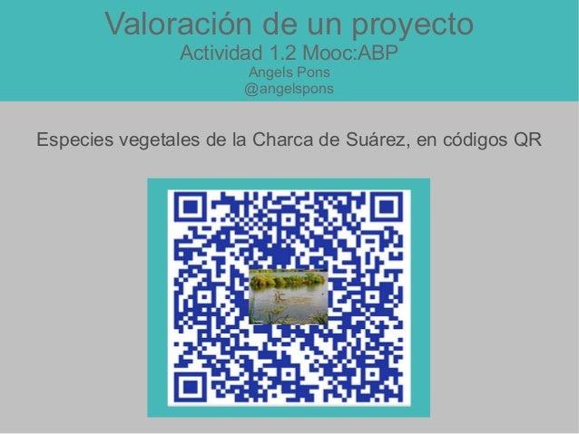 Valoración de un proyecto Actividad 1.2 Mooc:ABP Angels Pons @angelspons Especies vegetales de la Charca de Suárez, en cód...