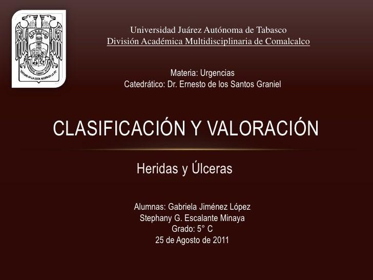 Clasificación y Valoración <br />Universidad Juárez Autónoma de Tabasco<br />División Académica Multidisciplinaria de Coma...