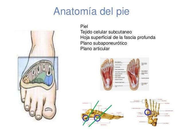 Valoracion del pie en diabetico nacional