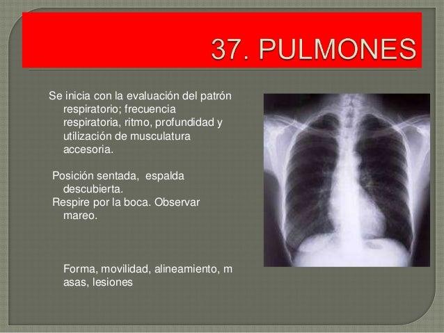 Los rasgos fisiológicos sheynogo del departamento de la columna vertebral