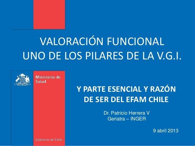 VALORACIÓN FUNCIONAL UNO DE LOS PILARES DE LA V.G.I. Y PARTE ESENCIAL Y RAZÓN DE SER DEL EFAM CHILE Dr. Patricio Herrera V...