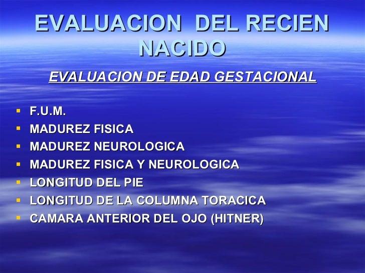 EVALUACION  DEL RECIEN NACIDO <ul><li>EVALUACION DE EDAD GESTACIONAL </li></ul><ul><li>F.U.M. </li></ul><ul><li>MADUREZ FI...