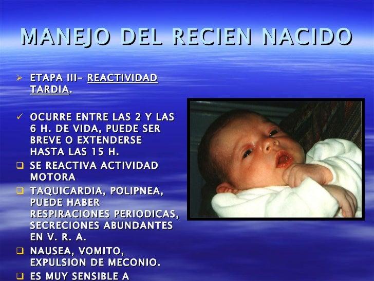 MANEJO DEL RECIEN NACIDO <ul><li>ETAPA III-  REACTIVIDAD TARDIA . </li></ul><ul><li>OCURRE ENTRE LAS 2 Y LAS 6 H. DE VIDA,...