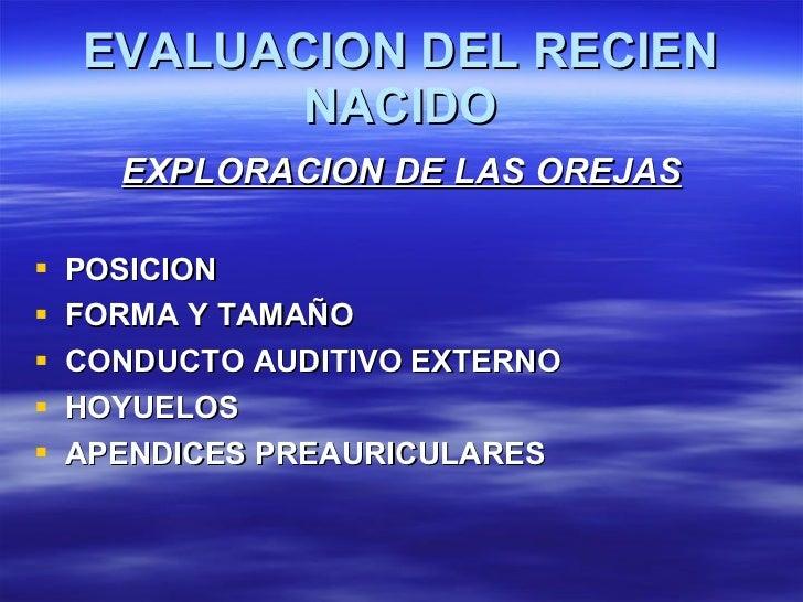 EVALUACION DEL RECIEN NACIDO <ul><li>EXPLORACION DE LAS OREJAS </li></ul><ul><li>POSICION </li></ul><ul><li>FORMA Y TAMAÑO...