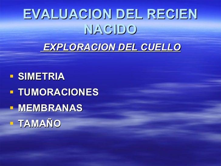 EVALUACION DEL RECIEN NACIDO <ul><li>EXPLORACION DEL CUELLO </li></ul><ul><li>SIMETRIA </li></ul><ul><li>TUMORACIONES </li...