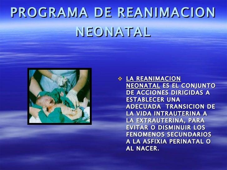 PROGRAMA DE REANIMACION NEONATAL <ul><li>LA REANIMACION NEONATAL  ES EL CONJUNTO DE ACCIONES DIRIGIDAS A ESTABLECER UNA AD...