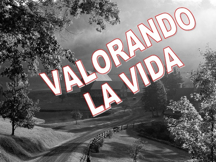 VALORANDO LA VIDA