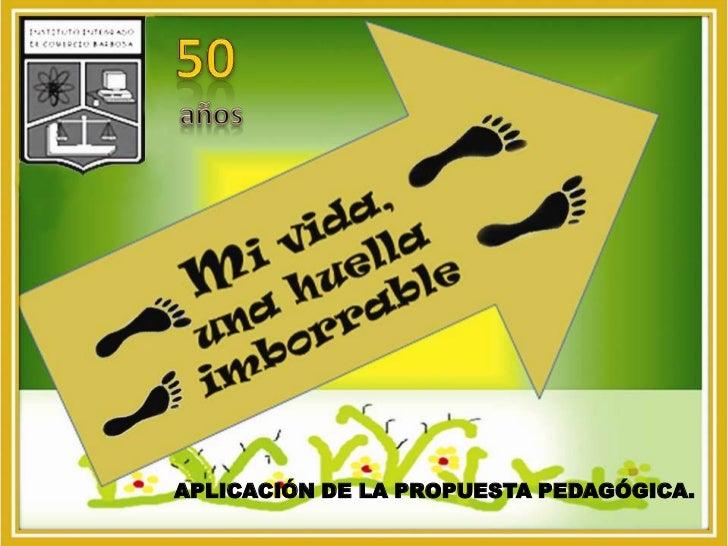 50<br />años<br />APLICACIÓN DE LA PROPUESTA PEDAGÓGICA.<br />